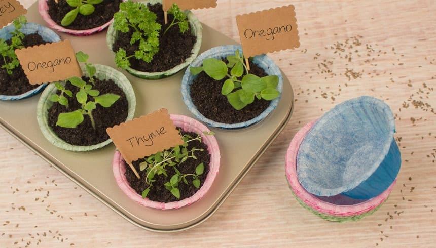 Toppits® Stable Muffins zu kleinen Blumentöpfen umfunktioniert